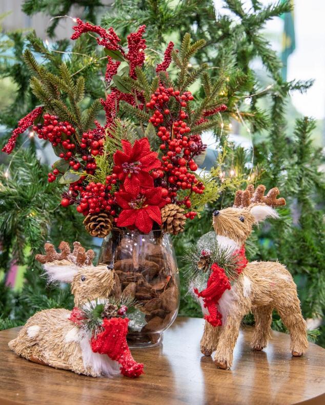 foto de Decorações Natalina
