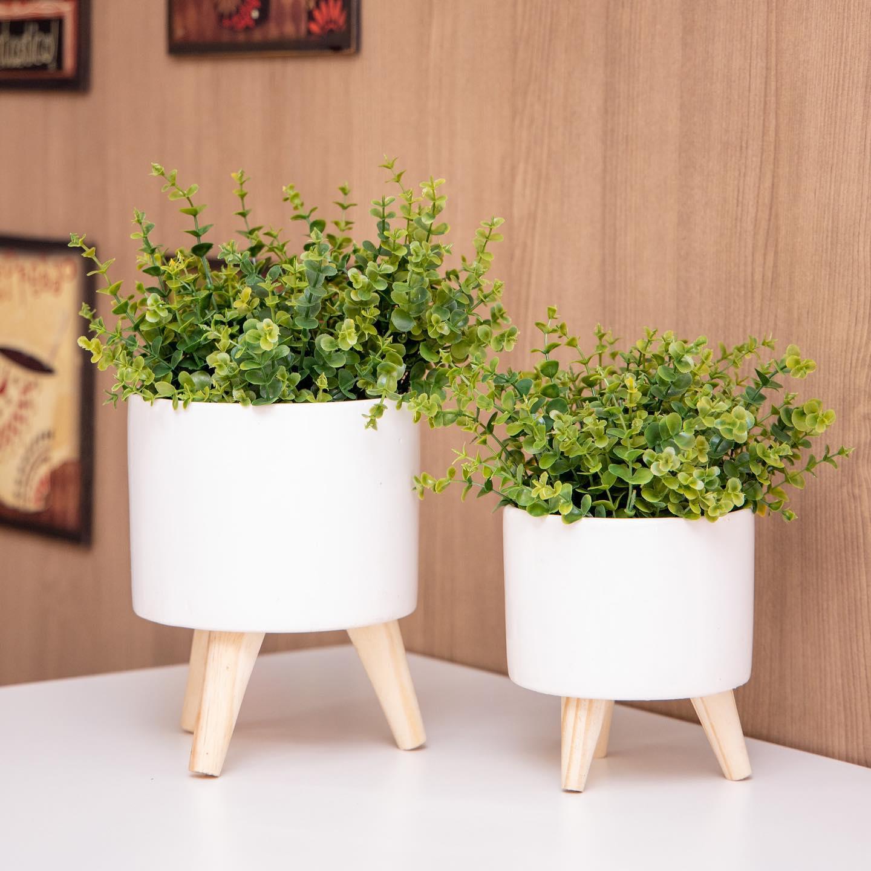 foto de Vasos para plantas!